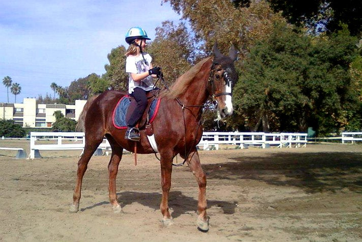 Horse riding lesson at Bennett Farms