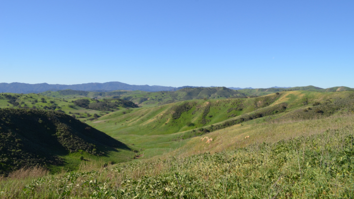 Upper Las Virgenes Canyon Open Preserve - Woodland Hills